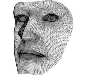 Российские ученые создали комплекс, который по выражению лица может находить подозрительных личностей в потоке людей