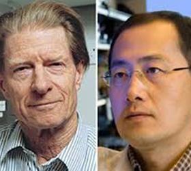 Нобелевскую премию получил Синья Яманака