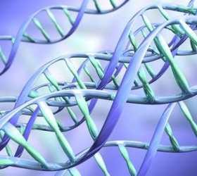 Еврокомиссия разрешила европейским врачам заниматься корректировкой человеческого генома