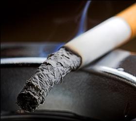 В Австралии хотят ввести лицензию на курение