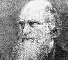Чарльз Дарвин получил на выборах в Конгресс Америки четыре тысячи голосов