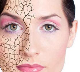 Учеными создана синтетическая кожа, способная к регенерации