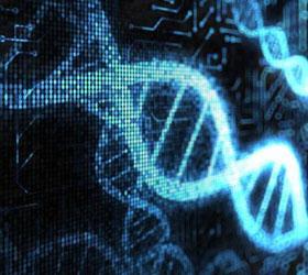 Европейские ученые изобрели новый способ записи информации на молекулы ДНК