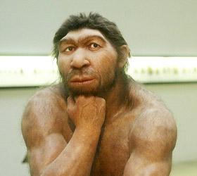 Ученые из Гарвардского университета опровергли информации о поиске суррогатной матери для неандертальца