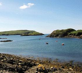 К берегу заповедника в Шотландии прибило сало времен Второй мировой войны