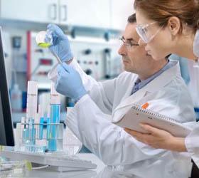 Ученым удалось создать живые клетки-зомби