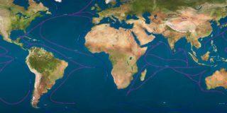 Выставка Мировой Океан