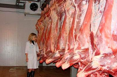 Откажется ли Россия от говядины?