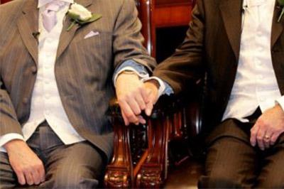 Законопроект, предусматривающий лишение родительских прав гомосексуальных пар отозван