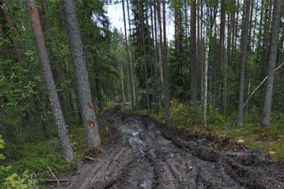 В Иркутске найдены тела двух сотрудников СКР