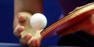 Чемпионат Европы по настольному теннису в 2015 году пройдет в Екатеринбурге