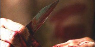 После просмотра фильма ужасов мужчина, проживающий в Ульяновской области, предпринял попытку  отрезать сожительнице голову