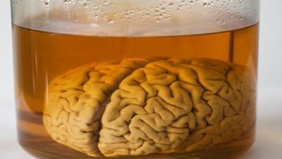 mozge-nashem-mifov-eto-interesno-poznavatelno-kartinki_488539496