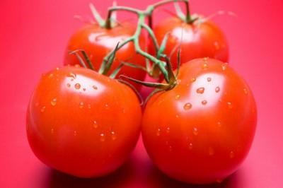 1378598480_pomidor1-620x372