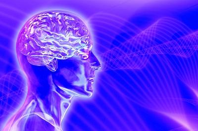 Мозг-человека