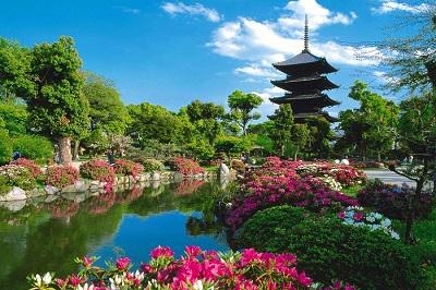 1273264444_31177331_foto_oboi_hrama_toji_v_kioto