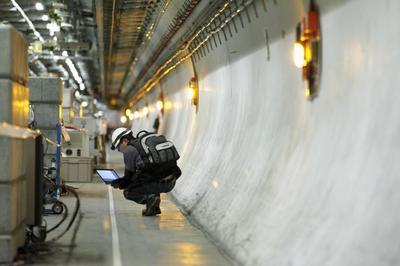 Хорёк, остановивший Большой адронный коллайдер, посланец Вселенной?