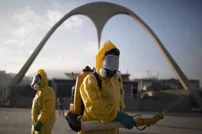 Станет ли лихорадка Зика угрозой для Олимпиады в Рио-де-Жанейро