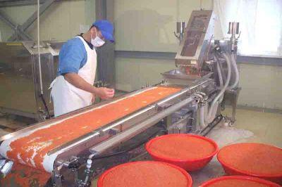 На Камчатке начнется строительство рыбоперерабатывающего заводаф