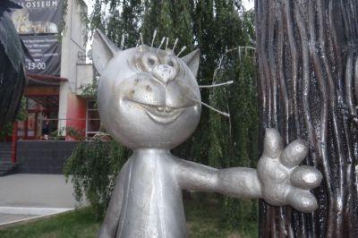 Может ли кот Барсик из Барнаула составить конкуренцию котенку с улицы Лизюкова
