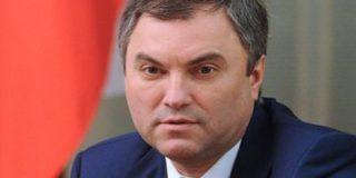 Володин считает, что нет смысла в возвращении российской делегации в ПАСЕ