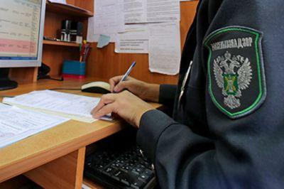Российские автоматизированные системы будут наблюдать за маршрутом белорусских товаров