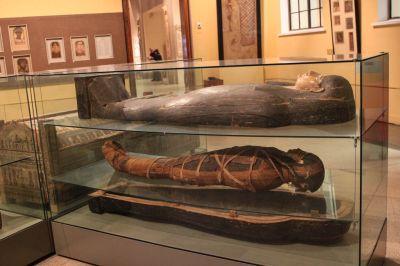 Пушкинский музей скоро покажет миру, как выглядели истинные египтяне
