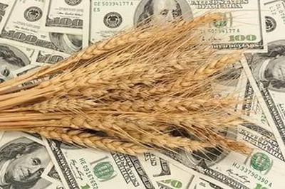 В России считают, что вопрос с трудностями поставок в Турцию сельхоз продукции сильно преувеличен