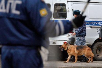 По Москве и Московской области началась спецоперация «Анаконда»
