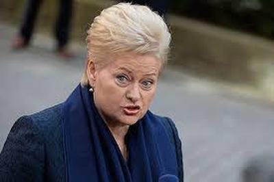 """По мнению президента Литвы, страну могут спасти только американские системы """"Патриот"""""""