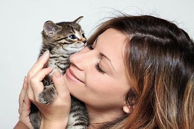 Не забудьте поздравить своего кота