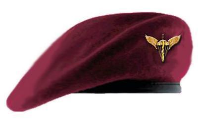 Петр Порошенко объявил осмене цвета беретов десантников иновом названии ВДВ