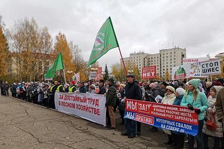Общероссийская кампания «За достойный труд в лесном хозяйстве»
