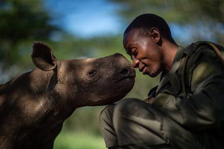 Фотограф года дикой природы LUMIX People's Choice Award