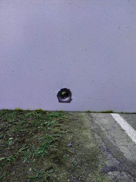 Автомобиль регионального отделения ЛДПР подвергся обстрелу