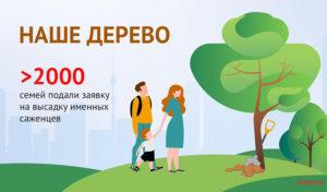"""Проект «Наше дерево» заботится о """"здоровье"""" города"""