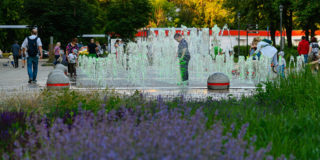«СМУ-6 Инвестиции»: Эклектичная усадьба и самый старый дуб Москвы – самые интересные места рядом с ЖК «Любовь и голуби»